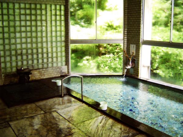 ... 温泉 ふぢや旅館 - 温泉新選組